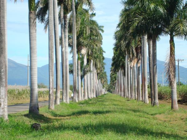 Chichigalpa, Chinandega, Nicaragua